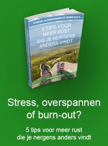 Gratis eboek over meer rust bij stress, overspannenheid en burn-out door Nanda Noorlander van N-balans
